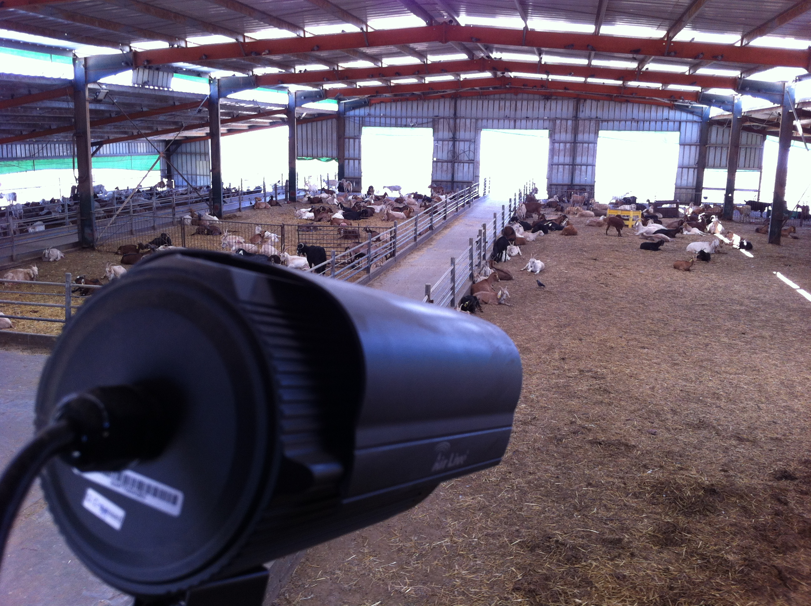 Wireless Network for Internet Access and Video Security Solution in a Farm